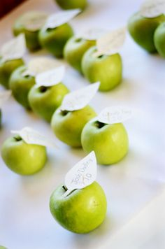 Apple Green Wedding Theme from rusticweddingchic.com