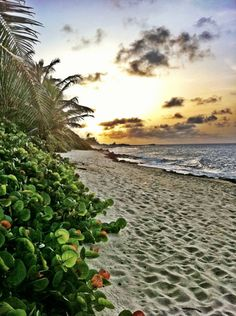 Puerto Rico!!! Beautiful beaches!