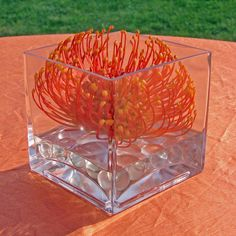 #c2mdesigns #floral #floraldesign #centerpiece #cocktail #cube #orange #pincushion #protea #style #minimalist #contemporary #mohegansun #nxtevent #designsthatrock #likeC2MdesignsFacebook Designer: #christinemccaffery