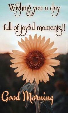 Good Morning Msg, Good Morning Prayer, Good Morning Picture, Good Morning Messages, Morning Pictures, Good Morning Images, Monday Blessings, Morning Blessings, Morning Prayers