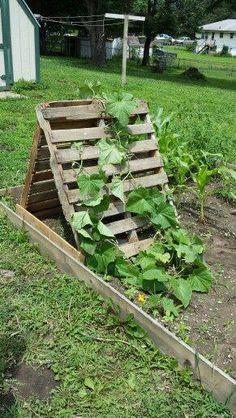 23 Functional Cucumber Trellis Ideas Guaranteed to Boost Your Harvest – Diy Garden Diy Trellis, Garden Trellis, Trellis Ideas, Small Backyard Gardens, Small Gardens, Garden Beds, Vegetable Garden, Veggie Gardens, Garden Fences