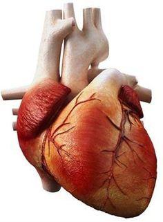 Sólo dos de cada 1.000 personas en España tiene una salud cardiovascular ideal. http://www.farmaciafrancesa.com/main.asp?Familia=189=271=familia=1=223