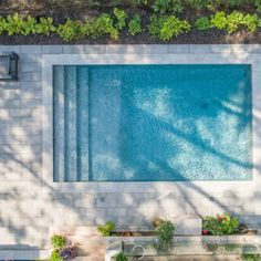 Backyard Pool Landscaping, Backyard Pool Designs, Backyard Privacy, Small Pools, Swimming Pools Backyard, Small Backyard Landscaping, Swimming Pool Designs, Modern Backyard Design, Small Pool Design