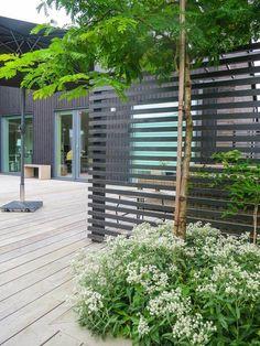 garden design ideas on tight budget Pergola Garden, Terrace Garden, Backyard Landscaping, Garden Seating, Pergola Kits, Back Gardens, Outdoor Gardens, Outdoor Rooms, Outdoor Living