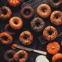 Follow yonce & get posts on the daily @hayleybyu spooooooky donuts