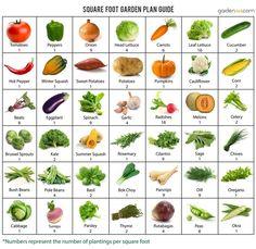Square-Foot-Garden-Plan.jpg (925×900)