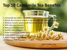 Top 10 Reasons to Drink Camomile Tea