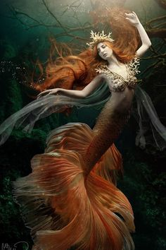I love all fantasy and mythical stuff, but my favorite ones are mermaids.So this is a collection of mermaid images I've been picking all over the internet. Fantasy Creatures, Mythical Creatures, Sea Creatures, Siren Mermaid, Mermaid Fairy, Tattoo Mermaid, Mermaid Kisses, Mermaid Artwork, Mermaid Drawings