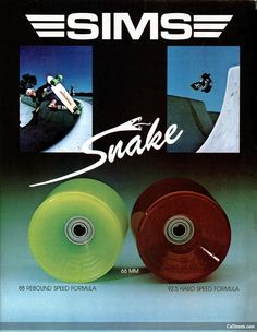SKATE AND SNOWBOARD LEGEND TOM SIMS PASSES : Lavender Room: Slowtwitch Forums