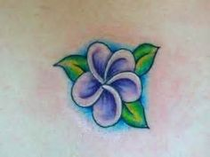 Hawaii Plumeria Flowers Tattoo - Bing images