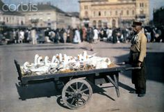 ca. June 1932, Hungary --- A man carts geese to the market --- Image by © Hans Hildenbrand/National Geographic Society/Corbis