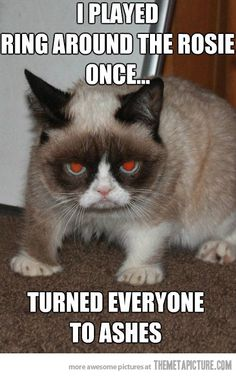 Internet celebrity Grumpy Cat, the face of countless memes, has died at the age of her owners confirmed Friday. Here is 20 grumpy cat memes. Grumpy Cat Quotes, Funny Grumpy Cat Memes, Funny Animal Jokes, Cute Funny Animals, Cute Cats, Funny Cats, Animal Humor, Funny Minion, Animal Memes