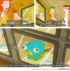 Ha ha! That's when they got Perry! (Aka Agent P) I LOVE that show!!!