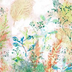 Spring botanical fine art print | Felt Painting & Drawing, Fine Art Prints, Felt, Paintings, Drawings, Spring, Image, Felting, Paint