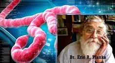 Dr. Piaka Ebola Virus /// AMERICAN SCIENTIST IN 2006 CALLED FOR USING EBOLA TO EXTERMINATE 90% OF THE EARTH'S PUPULATION ...  ........ DoD Has Deployed EBOLA Detection Kits to National Guard Units In All 50 States ... April 11, 2014 ... http://pissinontheroses.blogspot.com/  .................. YouTube: Max ALERT: MEXICO EBOLA Patient Being Flown to Atlanta Georgia?  ... 2:15 ... pub 11/17/2014  .................. YouTube: Aerosolizing ONE DROP of EBOLA = 1/2 MILLION DEAD 11:56 ... pub…