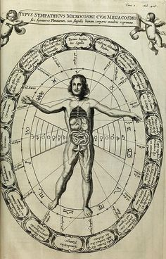 Diagram showing the sympathies between the macro and microcosm, featured in Athanasius Kircher's Mundus Subterraneus (1665)