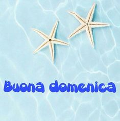 Happy Weekend, Happy Sunday, Good Morning, Estate, Italian Quotes, Italian Phrases, Bonjour, Bom Dia, Buen Dia