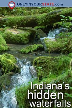 Travel Indiana Attractions USA Waterfalls Nature Places To Visit Outdoor Adventure Day Trips Things To Do Scenic Hikes Trails Easy Hikes Indiana Waterfalls. Camping Places, Vacation Places, Vacation Spots, Places To Travel, Travel Destinations, Places To Visit, Vacation Ideas, Camping Stuff, Indiana Dunes
