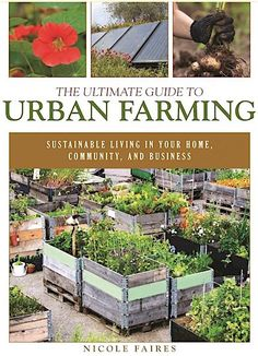 How to maximize your food production in an urban environment. #farming #sustainability #healthyfood
