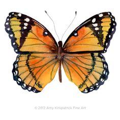 Spotted Orange Butterfly Print Choose 1 of 7 by AmyKirkpatrickArt, $10.99