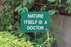 natureitself