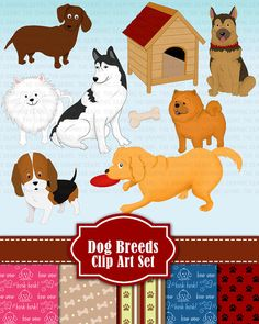 Dog Clip Art Dog Breeds Clipart Set Dog Breed golden retriever, siberian husky, beagle, daschund, chow chow  (personal or commercial)