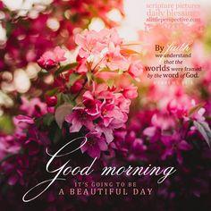 A good morning galleries Gud Morning Images, Good Morning Beautiful Quotes, Morning Inspirational Quotes, Good Morning Messages, Good Morning Wishes, Good Morning Quotes, Good Morning Flowers, Good Morning Good Night, Morning Rose