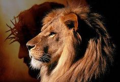 For someday the people will follow me. I, the LORD, will roar like a lion. And when I roar, my people will return trembling from the west.     Hosea 11:10