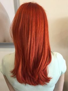 Inspiration by Elizabeth Pilato from Paul Mitchell the School - Michigan. Took her from a true bright orange to an orange with a tiny bit of red  @bloomdotcom