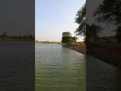 Wasser in der indischen Wüste - YouTube Youtube Kanal, World, Beach, Outdoor, Water, Outdoors, The Beach, Beaches, The World