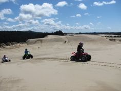 don't miss the Oregon Dunes... there's nothing like looking down 500 ft above sea level and screaming the whole way down!