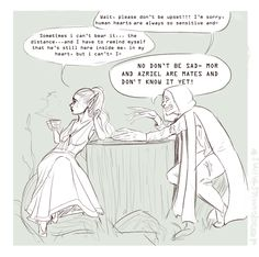 "courtofglassandfire: "" rowaelin-superwho: "" jessdoodlesthings: "" jessdoodlesthings: "" so idk I have a headcannon that Feyre gets info and gossips with the Suriel while in the Spring Court…and when she..."