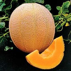 Cheap seeds bonsai, Buy Quality fruit seeds bonsai directly from China bonsai seeds Suppliers: Fruit seedsCantaloupe Hales Best Jumbo Melon Great Heirloom Vegetable 60 Seeds Bonsai Home Garden Plants, Fruit Garden, Vegetable Garden, Edible Garden, Herb Garden, Garden Seeds, Planting Seeds, Growing Cantaloupe, Orange