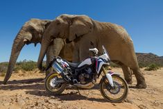 New 2016 Honda Africa Twin CRF1000 Adventure Motorcycle Pictures / Specs at www.HondaProKevin.com