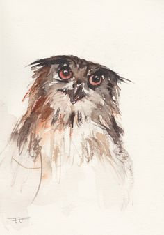 Owl Original Watercolor painting animal art bird by FrancinaMaria Watercolor Bird, Watercolor Animals, Watercolor Paintings, Animal Paintings, Animal Drawings, Zen Painting, Inspirational Artwork, High Art, Owl Art