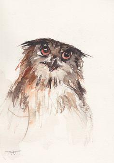 Owl Original Watercolor painting animal art bird by FrancinaMaria
