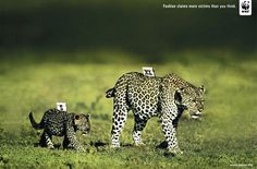 Powerful Animal Ad Campaigns #WWF #advertising #design #ads #animal