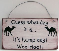 Guess What Day It Is It's Hump Day! Woo Hoo!! Sign Wood Hand Lettered Funny Fun
