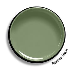 Roof: Resene Sword is a slippery silver metallic like silk and satin. From the Resene Roof colours collection. Green Fence Paint, Fence Paint Colours, Green Paint Colors, Roof Colors, Exterior Paint Colors For House, Interior Paint Colors, Cream Living Rooms, Green Shutters, Trending Paint Colors