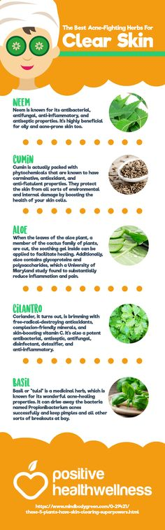 Share this Image On Your Site<p><strong>Please include attribution to Positive Health Wellness with this graphic.</strong><br /><br /><a href='https://www.positivehealthwellness.com/infographics/best-acne-fighting-herbs-clear-skin-infographic/'><img src='https://www.positivehealthwellness.com/wp-content/uploads/2017/05/The-Best-Acne-Fighting-Herbs-For-Clear-S...