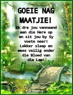 Goeie Nag, Afrikaans, Good Night Quotes, Day Wishes, Sleep Tight, Poems, Bible, Do Your Thing, Biblia