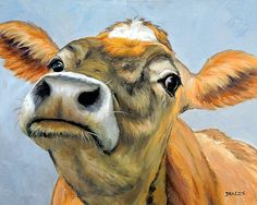 Jersey Cow Cow Art Jersey Dairy Cow Art Contemporary Farm Art Curious Cow Print of Painting by Dottie DracosVarious Sizes Cow Pictures, Cow Pics, Farm Art, Cow Painting, Cow Art, Watercolor Animals, Animal Paintings, Farm Paintings, Farm Animals