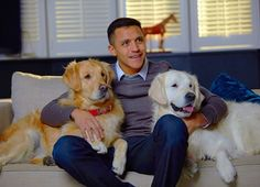 Sanchez moved into Marcos Rojo's old house with his two beloved dogs — Humber and Atom Premier League Champions, Up Dog, European Cup, Manchester United Football, Europa League, Late Nights, Labrador Retriever, The Unit, Dogs