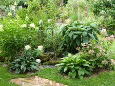 Casa dei Fiori..... Landscapes, Plants, Home, Gardening, Paisajes, Scenery, Plant, Planting, Planets