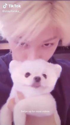Stray Kids Seungmin, Felix Stray Kids, Animals For Kids, Cute Animals, Cool Instagram, Crazy Kids, Dream Baby, Kid Memes, Kids Wallpaper