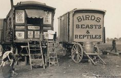 """Fans of HBO's short-lived period drama Carnivale will likely appreciate these vintage black and white gems that were recently unearthed by Retronaut. In the photos of UK circus caravans, we meet a variety of different subjects, from a """"Real Gypsy,… Old Circus, Night Circus, Circus Party, Circus Wedding, Circus Birthday, Birthday Parties, Dark Circus, Circus Theme, Gypsy Caravan"""