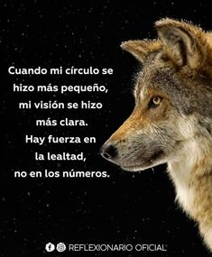 23 Friendship phrases that you will love and make you smile Wolf Quotes, Wisdom Quotes, Me Quotes, Prayer Quotes, Spanish Inspirational Quotes, Spanish Quotes, Daily Inspiration Quotes, Real Friends, Life Advice