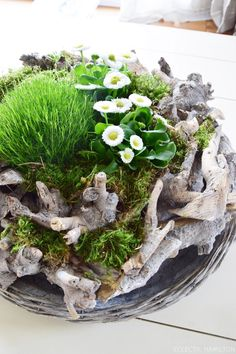 Filled spring wreath or: DIY spring landscape - Spring DIY! A great wreath made of wood for your dining room table, living room table or the consol - Diy Spring Wreath, Diy Wreath, Advent Wreath, Farmhouse Landscaping, Backyard Landscaping, Wooden Wreaths, Red Candles, Deco Floral, Spring Landscape