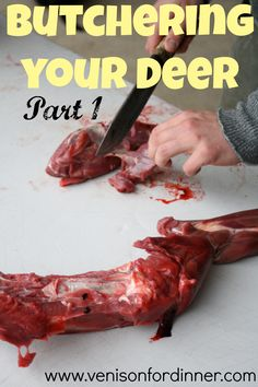 How To Butcher Your Deer from hanging to freezer! Part 1