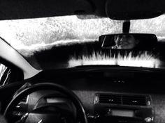 CAR WASH BABY!!!